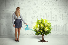 Business woman pouring water on lightbulb growing tree stock photo