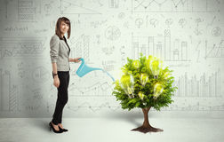 Business woman pouring water on lightbulb growing tree Royalty Free Stock Photos