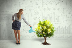Business woman pouring water on lightbulb growing tree Stock Images