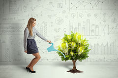 Business woman pouring water on lightbulb growing tree Stock Photography