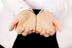 Business woman's hands holding something.  Stock Photography