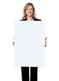 Business woman showing blank signboard Royalty Free Stock Photography