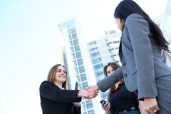 Business Woman Team Handshake Stock Images