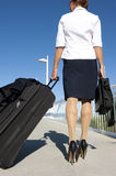 Business Woman Travelling royalty free stock photos