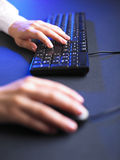 Business Woman Typing on Computer Keyboard Royalty Free Stock Photography