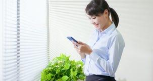 Business woman use smart phone stock photo