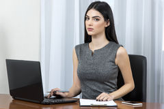 Business woman using laptop. Royalty Free Stock Photography