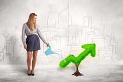 Business woman watering green plant arrow Royalty Free Stock Photos