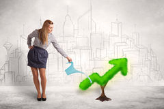 Business woman watering green plant arrow Royalty Free Stock Image