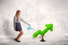 Business woman watering green plant arrow Royalty Free Stock Photo