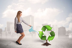 Business woman watering green recycle sign tree on city backgrou Stock Photography