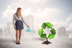 Business woman watering green recycle sign tree on city backgrou Royalty Free Stock Images