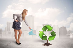 Business woman watering green recycle sign tree on city backgrou Royalty Free Stock Photos