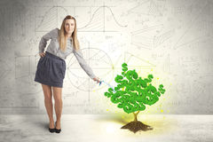 Business woman watering a growing green dollar sign tree Stock Photo