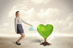 Business woman watering heart shaped green tree Stock Images