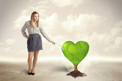 Business woman watering heart shaped green tree Royalty Free Stock Photography