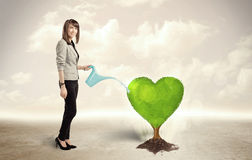 Business woman watering heart shaped green tree Stock Photos