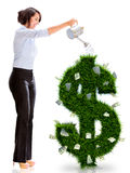 Business woman watering money plant Royalty Free Stock Images