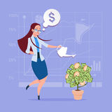 Business Woman Watering Money Tree Finance Success Concept. Flat Vector Illustration Royalty Free Stock Images