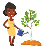 Business woman watering trees vector illustration. African-american business woman watering trees of three sizes. Young businesswoman watering plants. Business Royalty Free Stock Photos