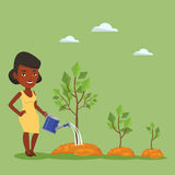 Business woman watering trees vector illustration. Stock Photo