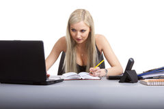 Business woman working Stock Photos
