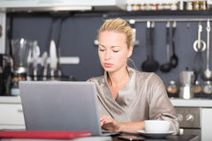 Business woman working from home. Stock Photos
