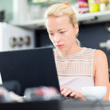 Business woman working from home. Royalty Free Stock Image