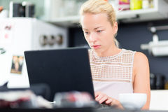 Business woman working from home. Royalty Free Stock Photos