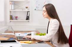 Business woman working on laptop at office royalty free stock photo