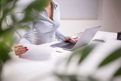Business Woman Working At The Office. Beautiful young business woman working at the office Royalty Free Stock Image