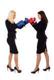 Business women boxing Stock Image