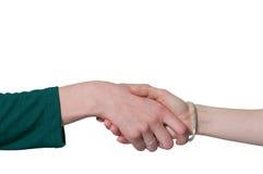 Business women handshake Stock Image