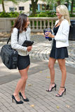Business women in park together. Two beautiful young business women talk in an outdoor park royalty free stock photo