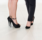 Business women's legs Royalty Free Stock Photo