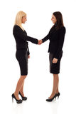 Business women shaking hands Royalty Free Stock Photos