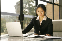 Business women working with laptop. Young business women working with laptop Stock Photos