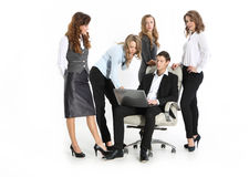 Business, the young chief and a group of young assistants Royalty Free Stock Photography