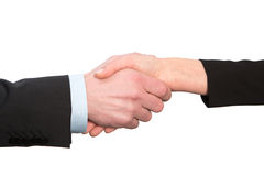 Businessb handshake isolated on white background Royalty Free Stock Image