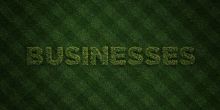 BUSINESSES - fresh Grass letters with flowers and dandelions - 3D rendered royalty free stock image. Can be used for online banner ads and direct mailers Royalty Free Stock Images