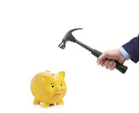 Businessman's hand about to break a piggy bank Stock Image