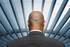 Businessman. Bald businessman back, with modern roof background Royalty Free Stock Photos