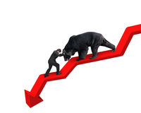 Businessman against bear on arrow downward trend line white back Stock Images
