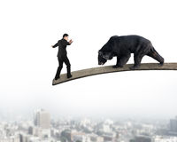 Businessman against black bear balancing on wooden board with ci Stock Photo