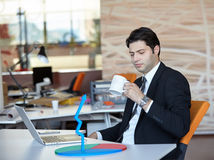 Businessman analyzing data Royalty Free Stock Photography