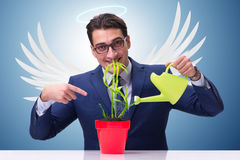 The businessman in angel investor concept growing future profits Stock Image