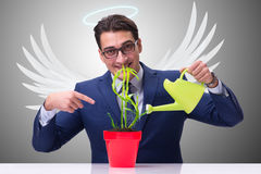 The businessman in angel investor concept growing future profits Royalty Free Stock Image