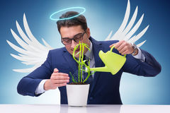 The businessman in angel investor concept growing future profits Stock Photography