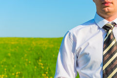 Businessman on a background field Stock Image