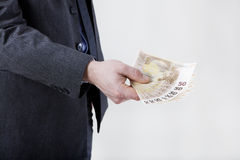 Businessman with banknotes Stock Image